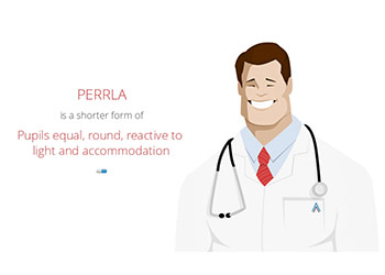 What Does Perrla Stand For